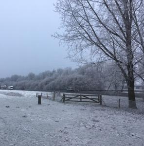 eein winters landschap