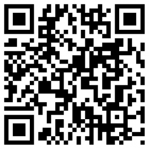 voorbeeld van een QR-code