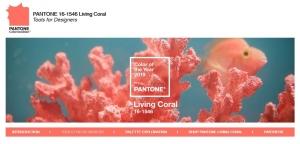 printscreen van de kleur living coral