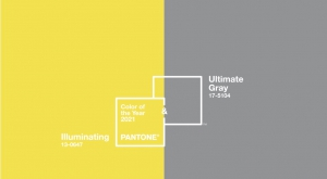 Printscreen van de twee kleuren van het jaar 2021